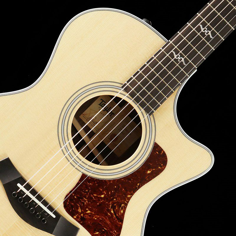 414ce Rosewood V-Class【良個体選定品】_4