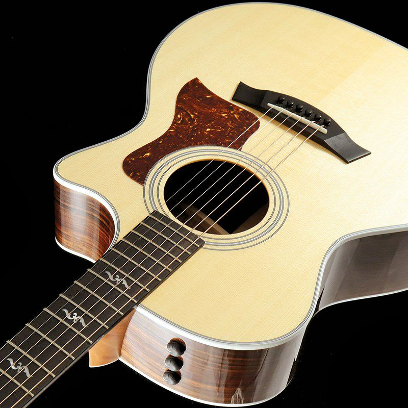 414ce Rosewood V-Class【良個体選定品】_5