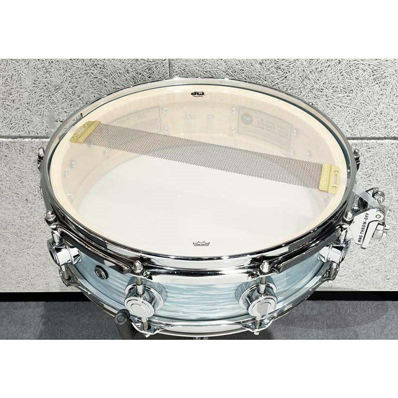 DW-CL1404SD/FP-PBOY/C [Collector's Pure Maple 14 x 4 Pale Blue Oyster]【展示品入れ替え特価!】_5