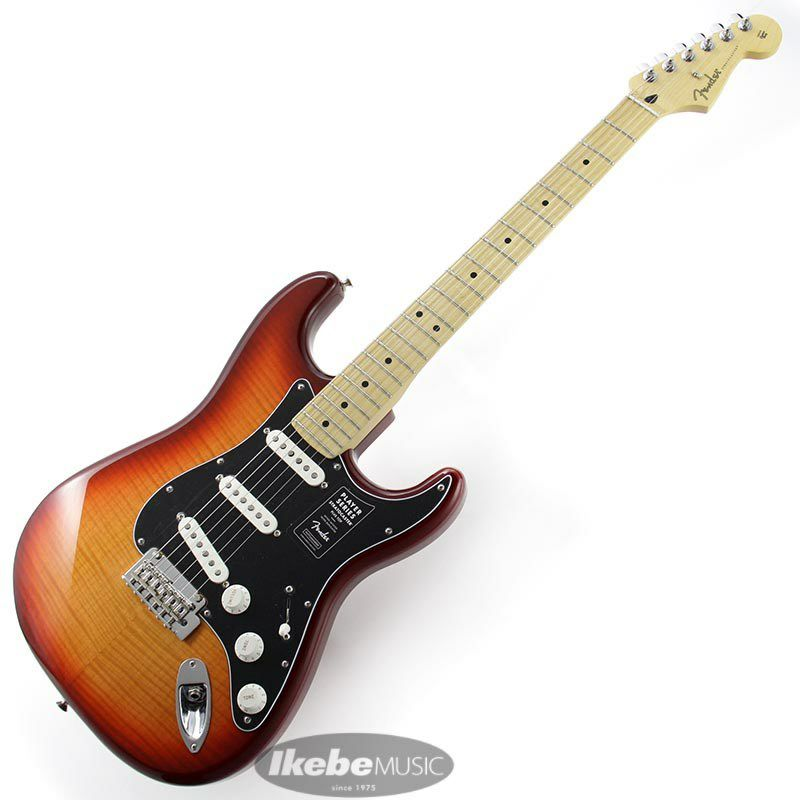 Player Stratocaster Plus Top (Aged Cherry Burst/Maple) [Made In Mexico]_2