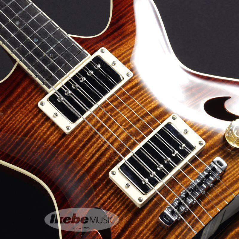 Arc-Hollow 5A Flame Maple Top (Tiger Eye Burst) #051368_4