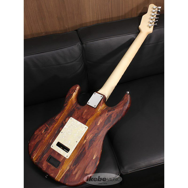 Studio Elite HD Caramel Cappuccino Shmear Alder Body 【SN.19017 / Weight≒3.5kg 】【2019 NAMM SHOW 出展モデル】_2