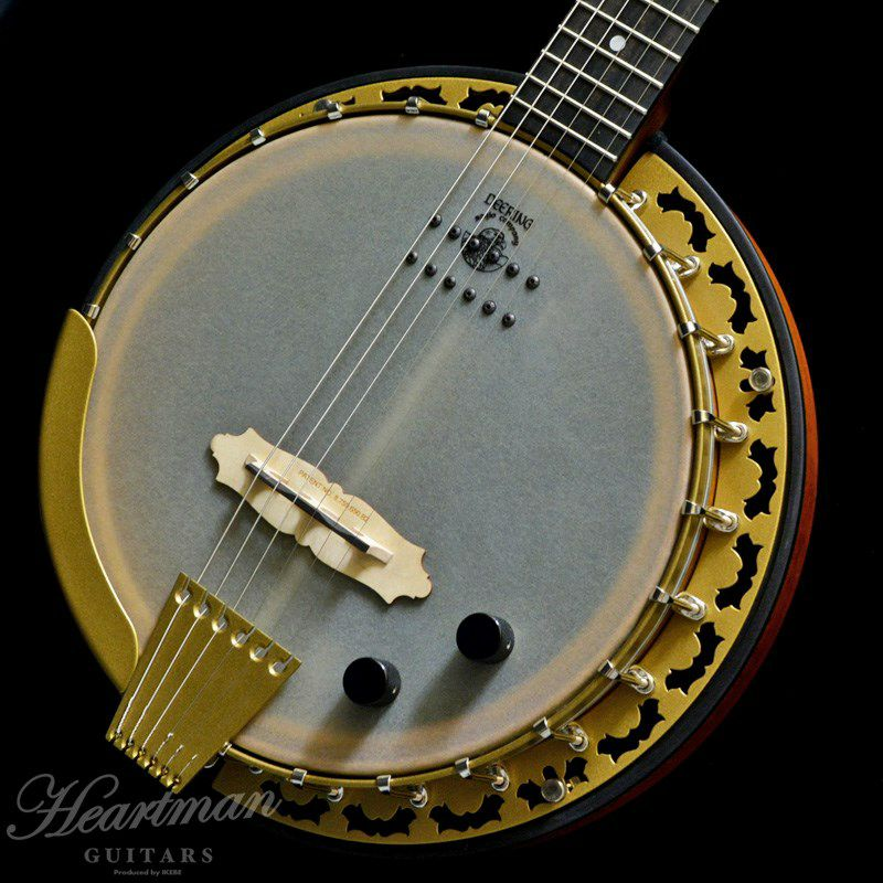 Pheonix 6-Strings Acoustic/Electric_3