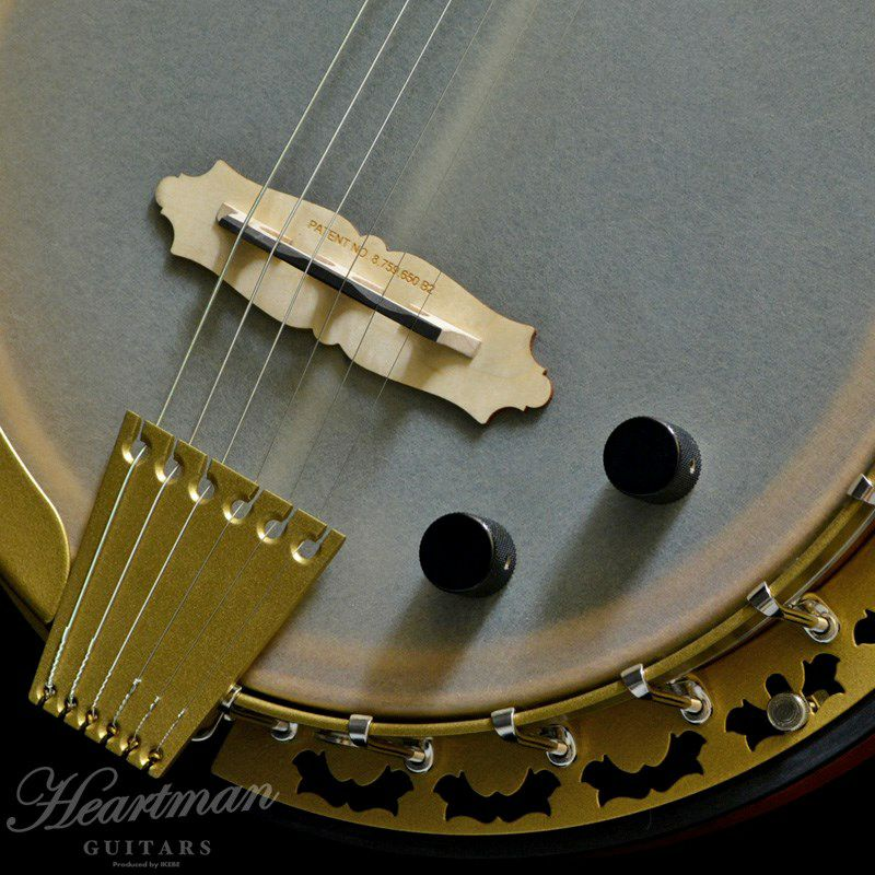 Pheonix 6-Strings Acoustic/Electric_5