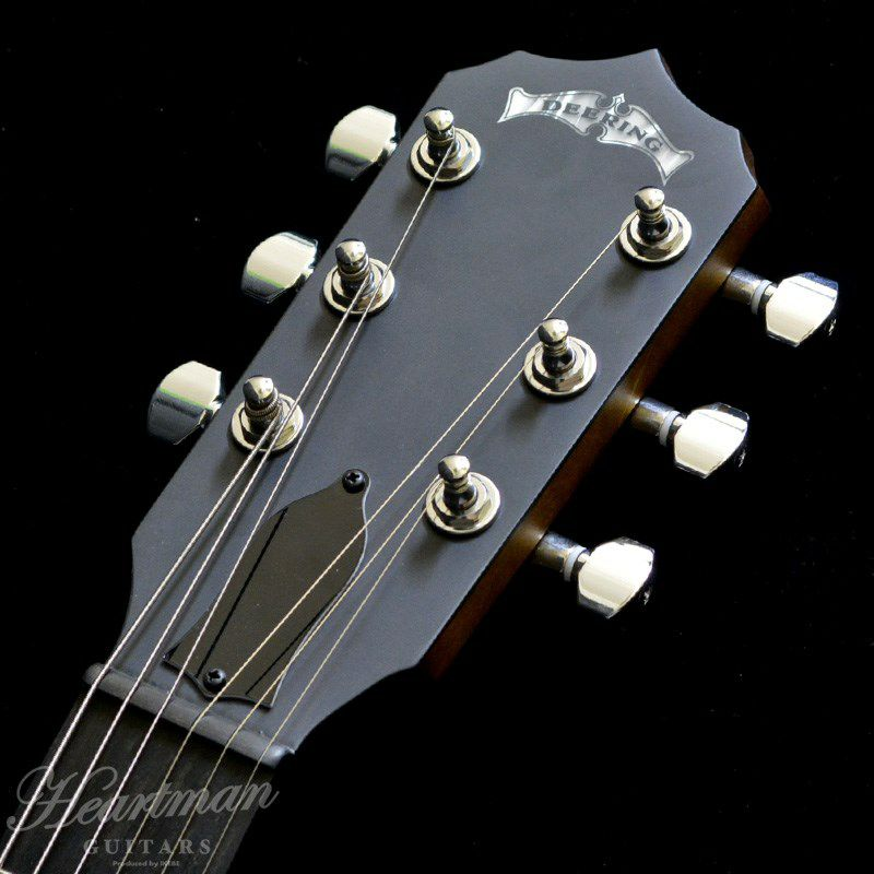 Pheonix 6-Strings Acoustic/Electric_6