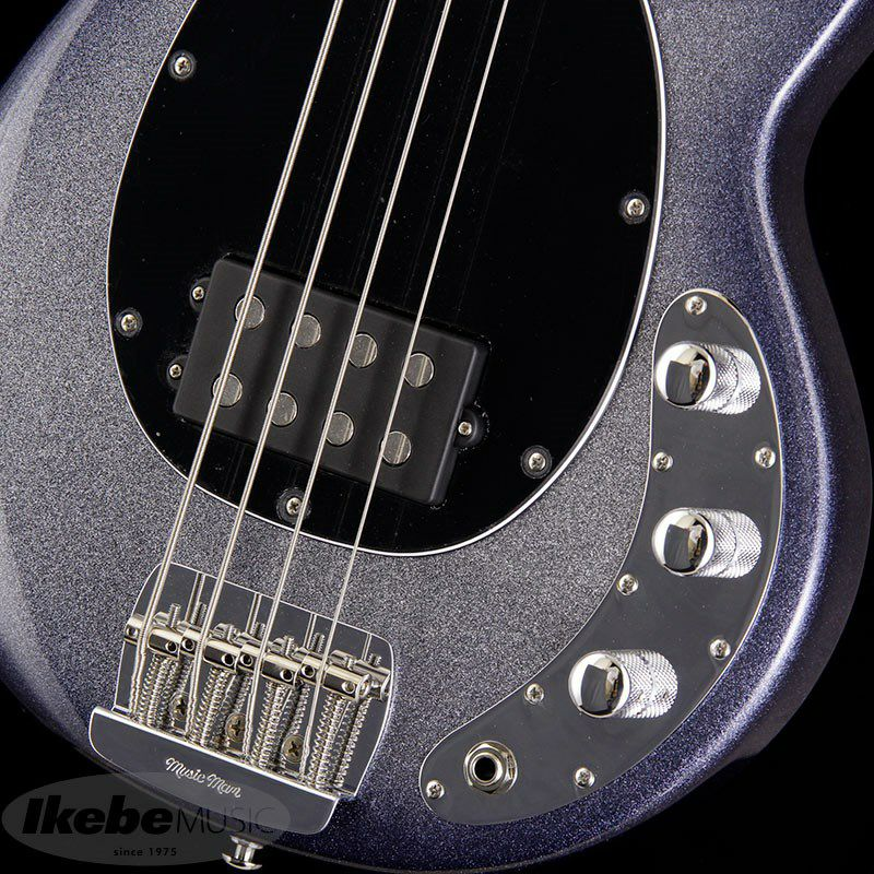 Short Scale StingRay (Starry Night/Rosewood)_5
