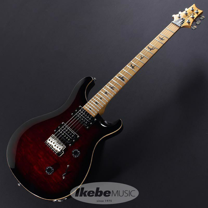 SE Custom 24 Roasted Maple Limited (Fire Red) 【特価】  【ポイント20%還元】_2