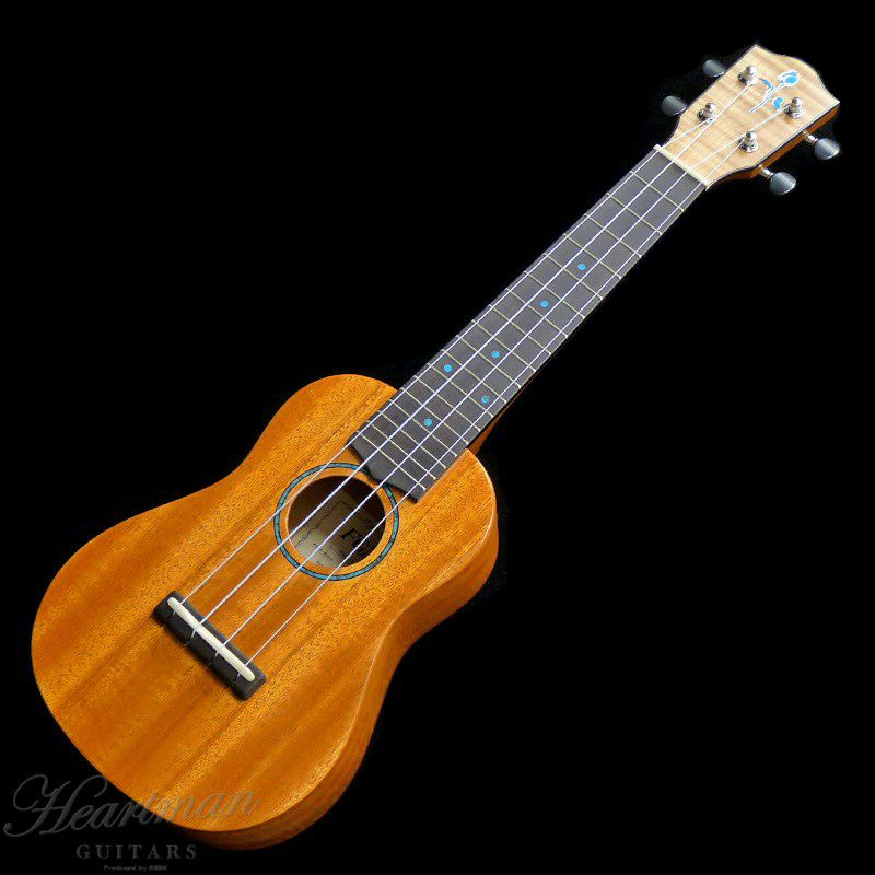 FGN Acoustic FUE-TS/T [Soprano]_1