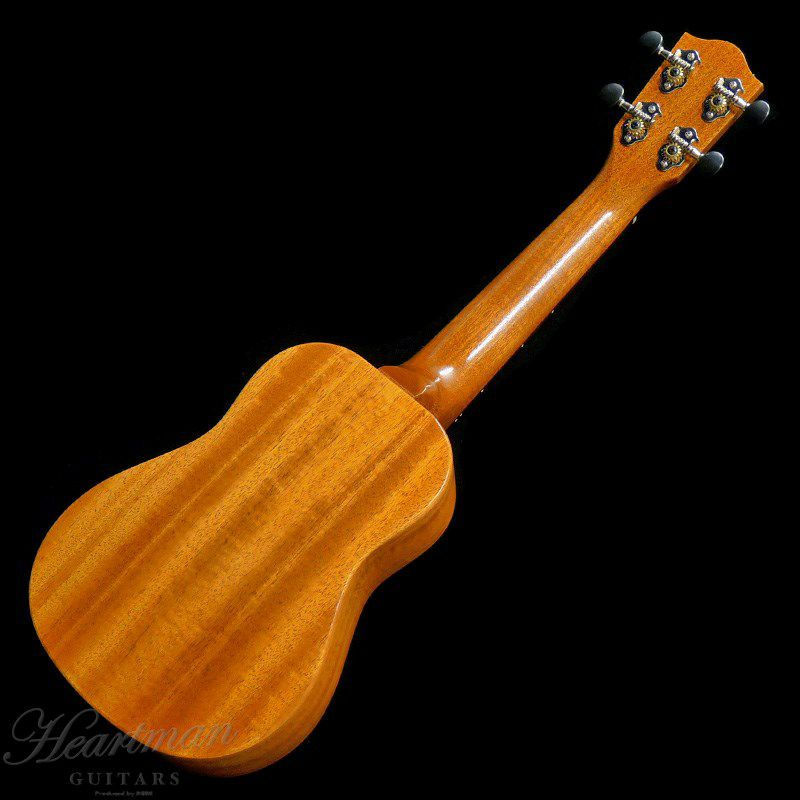 FGN Acoustic FUE-TS/T [Soprano]_2