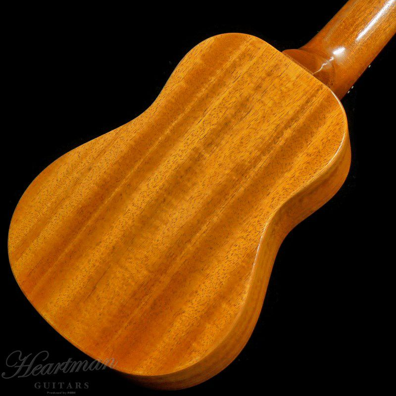 FGN Acoustic FUE-TS/T [Soprano]_4