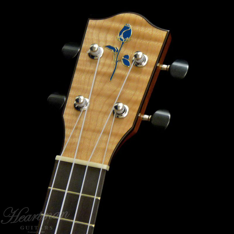 FGN Acoustic FUE-TS/T [Soprano]_5