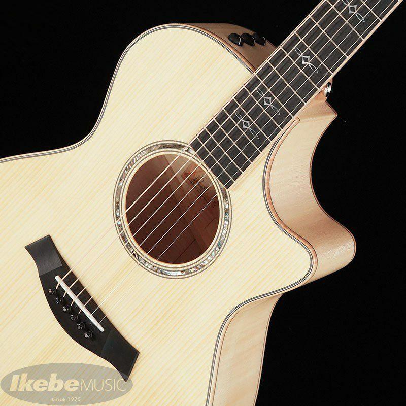Ikebe Original Order GCce-ADS Flame Maple_4