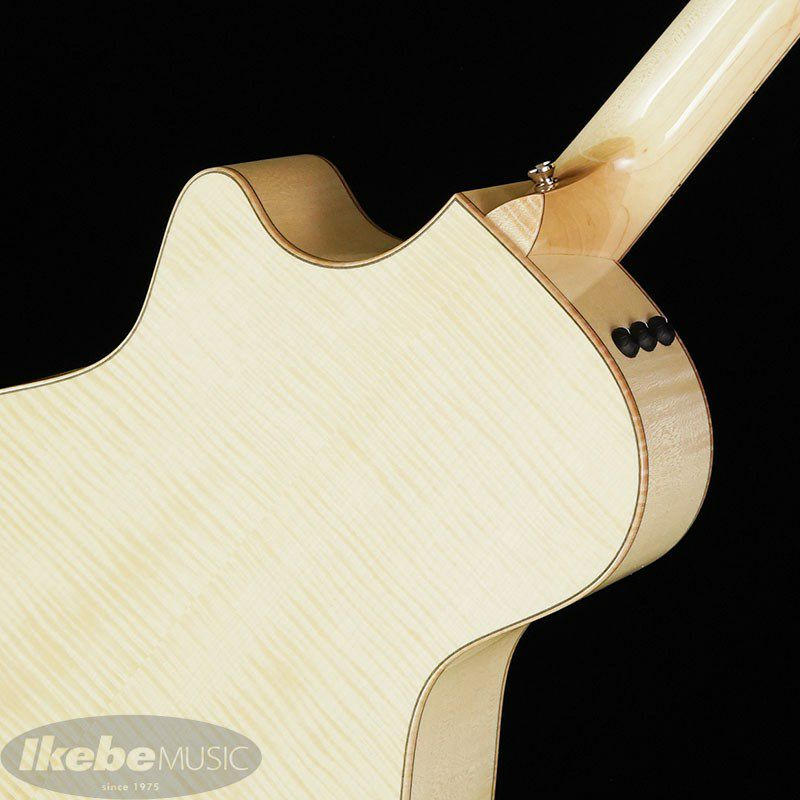 Ikebe Original Order GCce-ADS Flame Maple_7